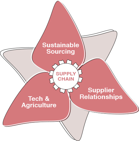 Supply Chain food business design
